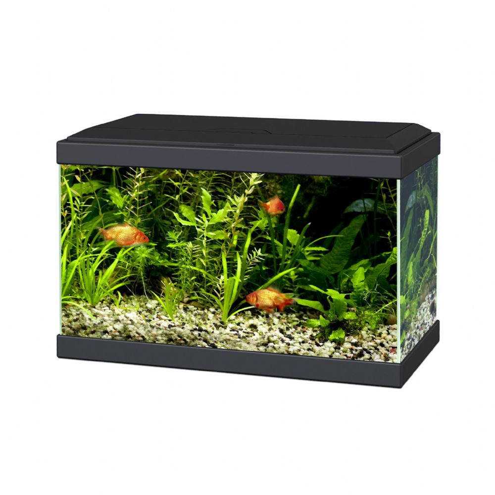 Aqua 20 Ciano Aquarium with LED Lights & Filter BLACK
